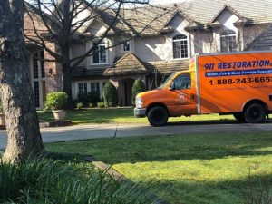 Mold Removal North Georgia